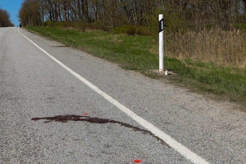 Avariipaigalt põgenenud autojuht jättis õblukese vana naise asfaldile surema