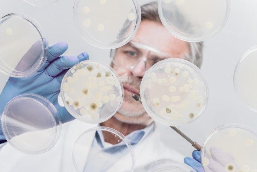 Superbakterid on sama ohtlikud kui vähk