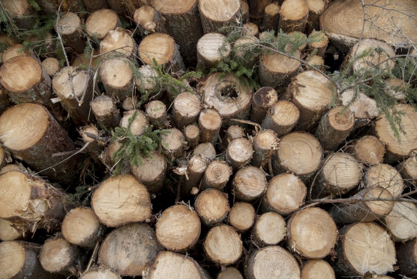 SOOME RAFINEERIMISTEHASES TÖÖTANUD EESTLANE: see, et loodust ei reostata, on täielik jama