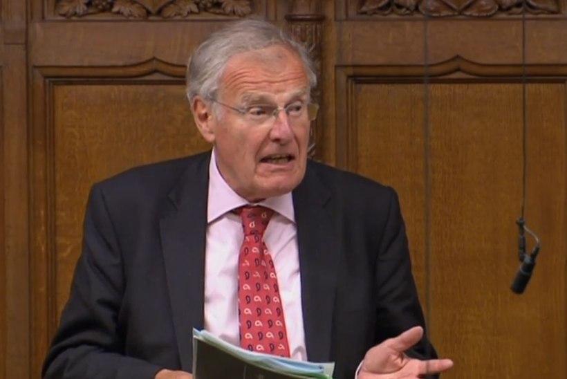 Briti parlamendiliige ei saanud seeliku alla piilumise põhimõttest aru
