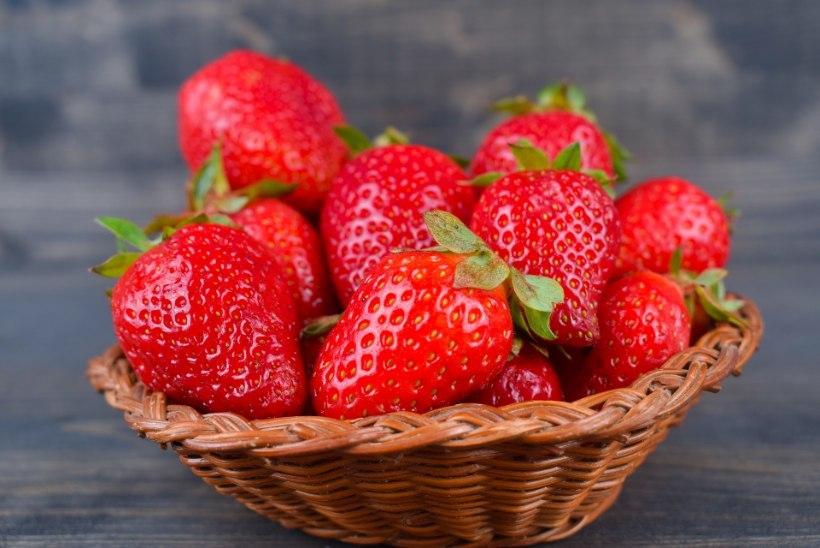 Maasikad toovad suve söögilauale