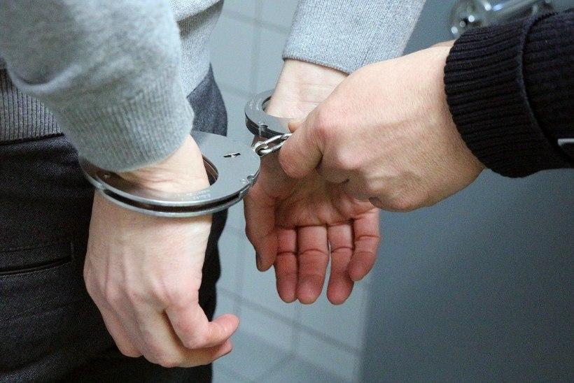 Narkomaan arreteeriti, kui ta politseisse oma diileri peale kaebama läks