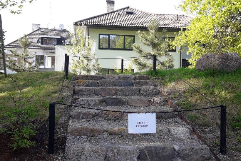 VILISTAVAD REEGLITELE: Kadrioru park sulges poolpaljaste napsitajate pärast osa Jaapani aiast