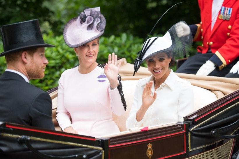 Hertsoginna Meghan saabus Ascoti võiduajamisele tõllaga