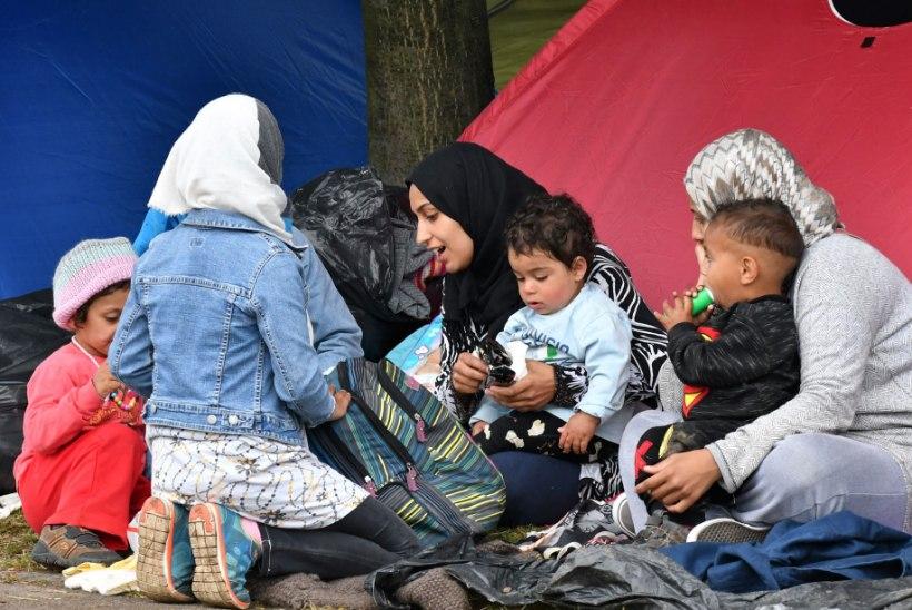 Raport: pagulased püsivad kodukandis, mitte ei trügi Euroopasse