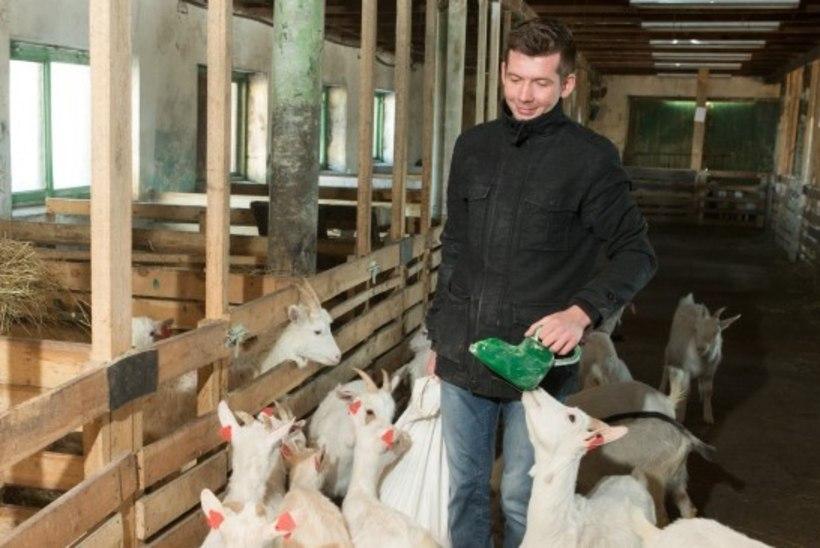 Inspektsioon ei vaidlusta Martin Repinski farmile tehtud  trahvi  vähendamist