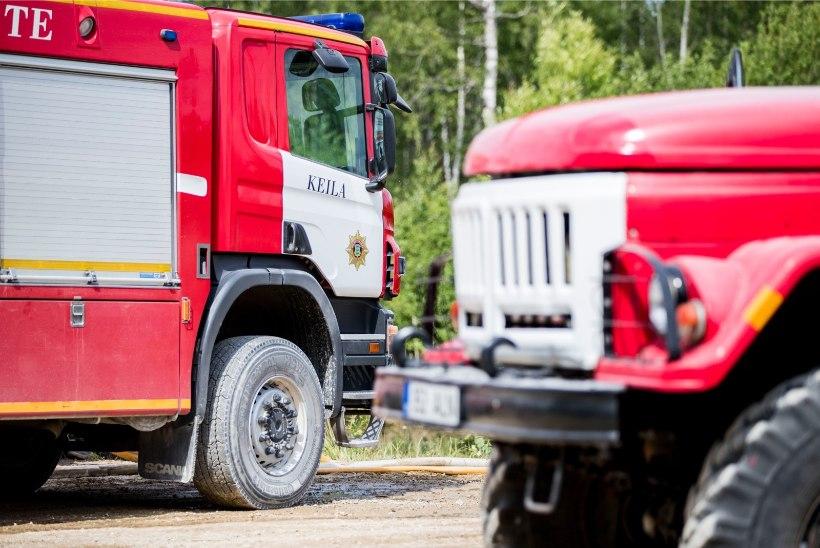 Saaremaal kaotas tulekahjus kodu üheksaliikmeline suurpere