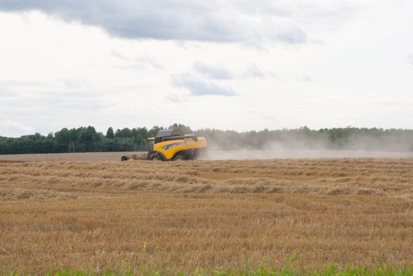 Teadlaste kliimaanalüüs: põllumehe töö läheb Eestis raskemaks
