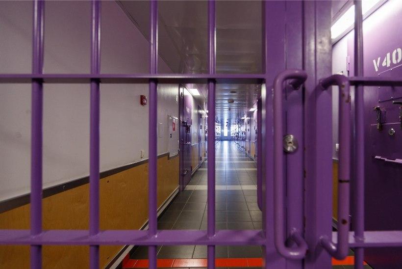 Vang sattus vägistajast sarinäpistaja küüsi