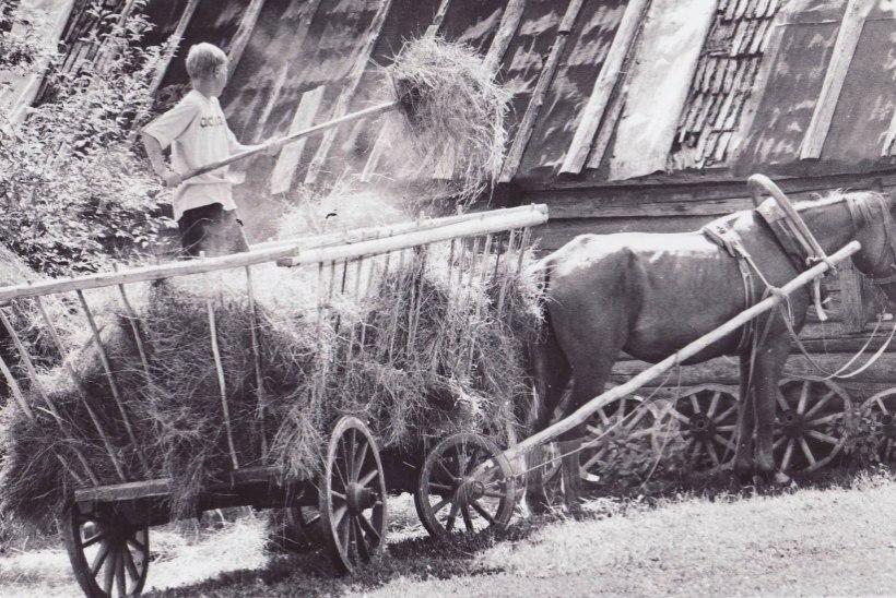 HARULDASED KAADRID | Vaata, kuidas vanal ajal malevas tööd tehti