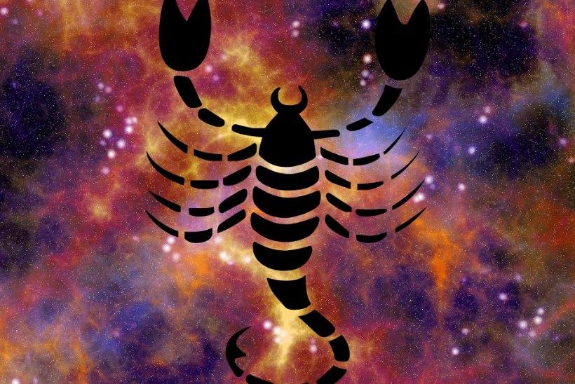 Skorpioni suvine armuhoroskoop: tähtsa otsusega tuleb viivitada