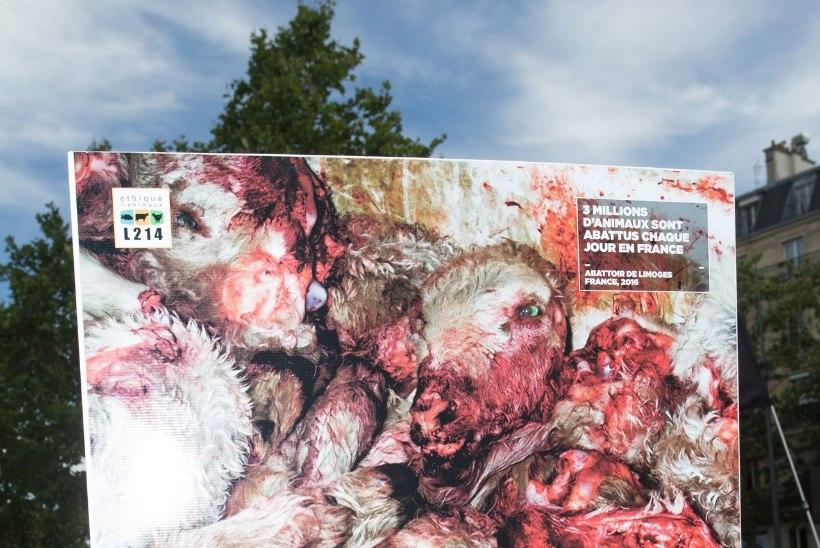 USKUMATU: sõjakad veganid rüüstavad Prantsusmaal lihakauplusi