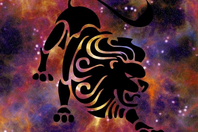 Lõvi suvine armuhoroskoop: ellu võib saabuda uus pereliige