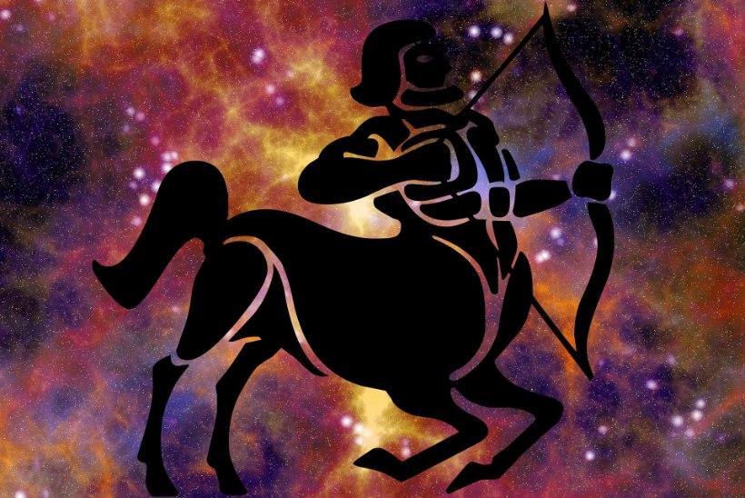 Amburi suvine armuhoroskoop: ambur mõistab, millega teda on õnnistatud
