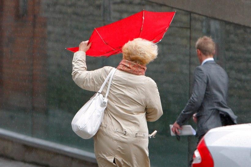 Otsige jope välja: nädalavahetus tuleb jahe, tuuline ja vihmahoogudega