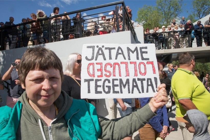 Tabiverelased lubavad tselluloositehase vastu protestima hakata