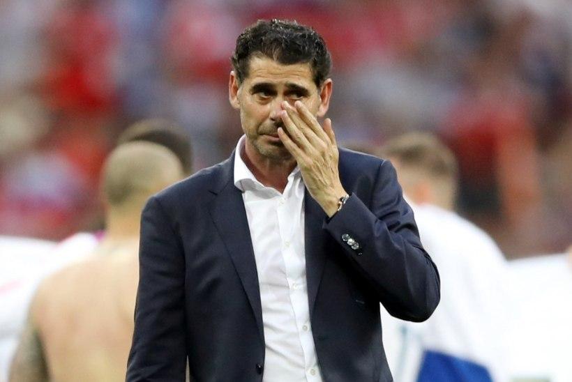 Hispaania koondise peatreener: mängisime väga hästi
