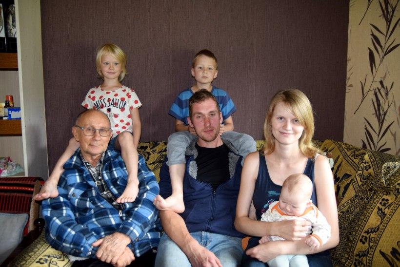 Väiketalu vaevad: piimalambad panevad eestlaste konservatiivsuse proovile