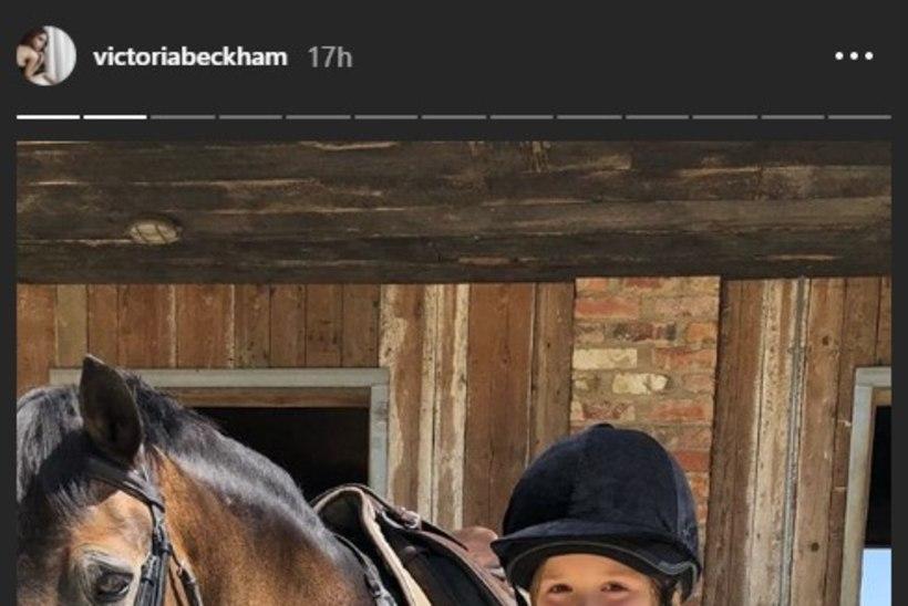 Beckhamid kinkisid tütrele sünnipäevaks poni