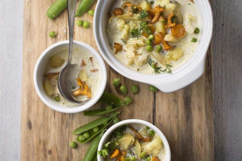 Värske köögivilja supp kukeseente ja kreemjuustuga