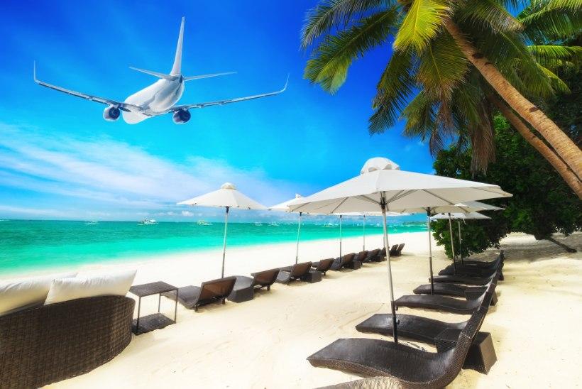 Odavlennufirmad: kuhu Tallinnast ja Riiast sõita saab?