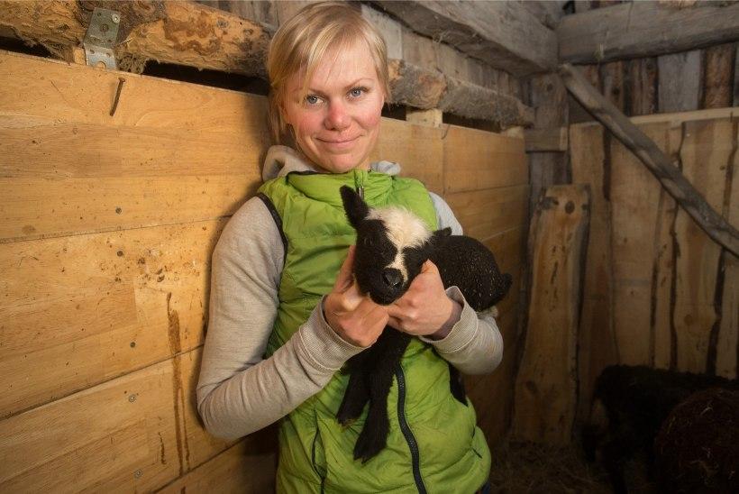 Heidi Hanso ajas loomasõbrad oma supitöötoa reklaampildiga pahaseks
