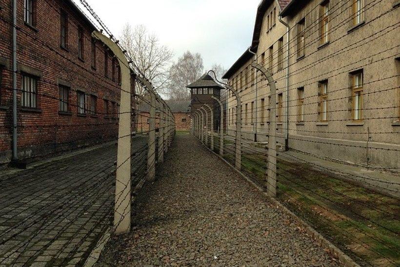 RUMAL TEMP: turistid püüdsid traagilise taustaga Auschwitzist meeneid varastada