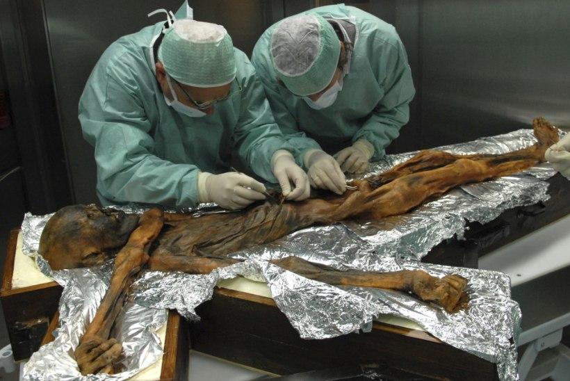 KIVIAJA DIEET: mida sõi 5300 aastat tagasi elanud jäämees Ötzi enne surma?