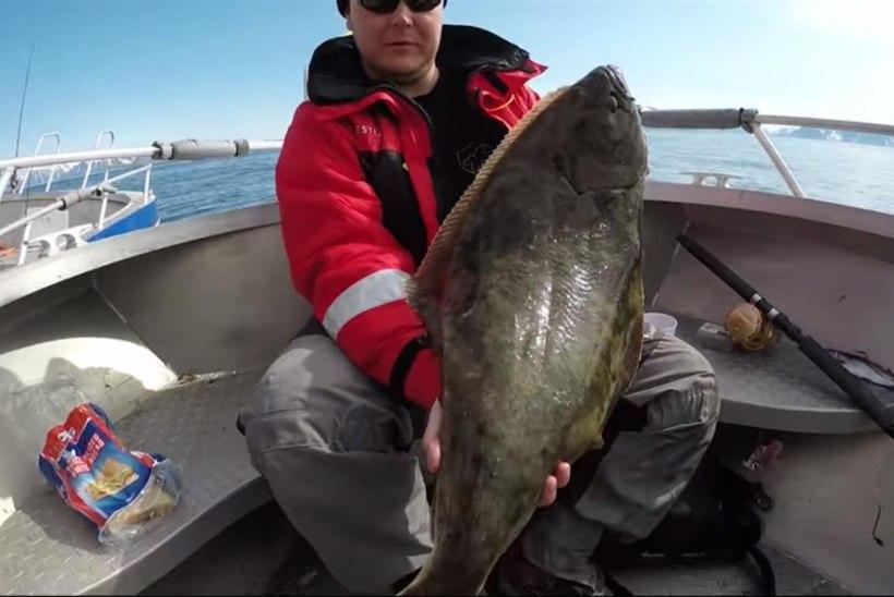 VIDEO: Nii suur kala, et veab paati järgi!