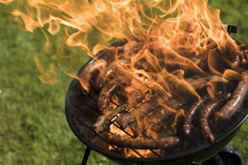 VAJAD ÕLUT JA SIBULAT! Ehk kuidas grillida võimalikult puhtalt