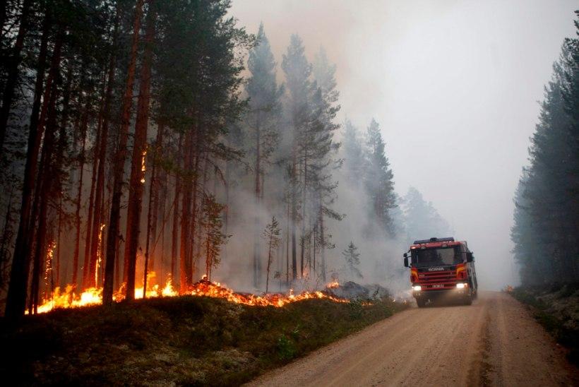 VIDEO | Rootsi päästjad süütavad põlengute ohjamiseks ka ise metsa