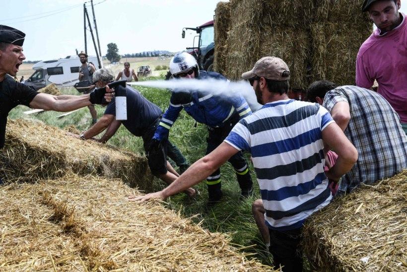USKUMATU! Tour de France'il piserdati pipragaasiga nii mässavaid farmereid kui ka rattureid