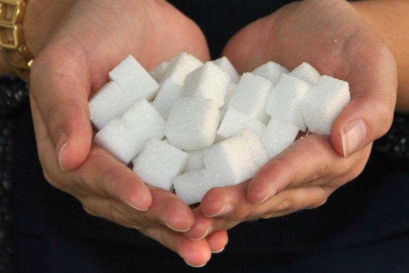Valge suhkur või magusained – mida võtta, mida jätta?