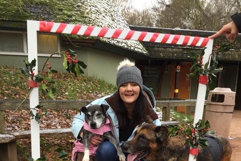 FOTOD | Endine meditsiiniõde avas Inglismaa esimese koertele mõeldud hospiitsi