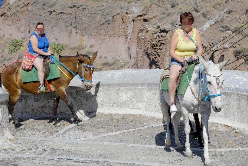 GALERII | Paksud turistid sandistavad eesleid