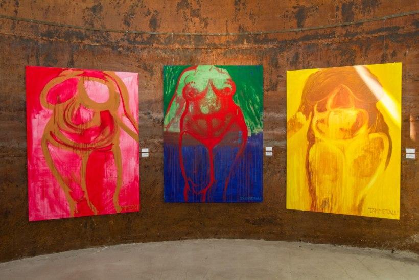 GALERII | Kunstnikud Tiina Tammetalu ja Mariann Hakk-Eve kohtusid vaatajatega Viinistu kunstimuuseumis