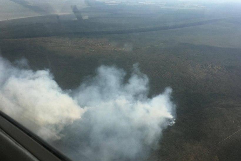 FOTOD | Alam-Pedja looduskaitsealal põleb üle 26 hektari raba, millele on päästjatel raske ligi saada