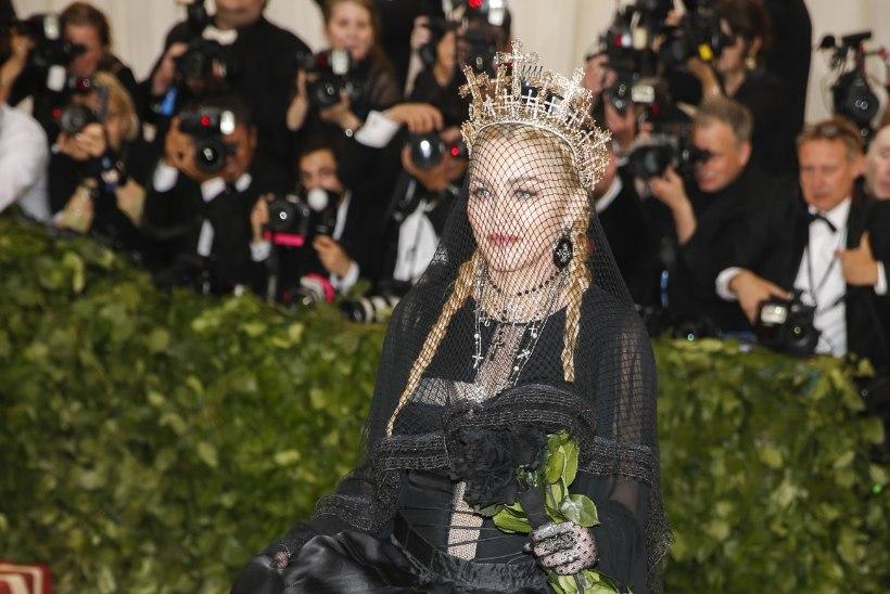 KARVASELT STIILNE: koer, kellest tehti Madonna koopia...
