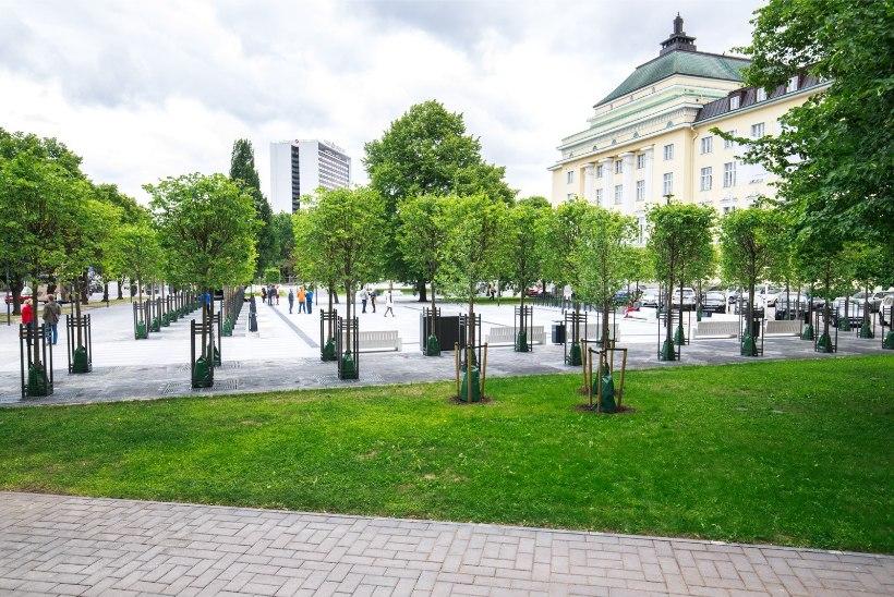 VIDEO | Tammsaare pargi ehitustööde tähtaeg lükkus taas edasi