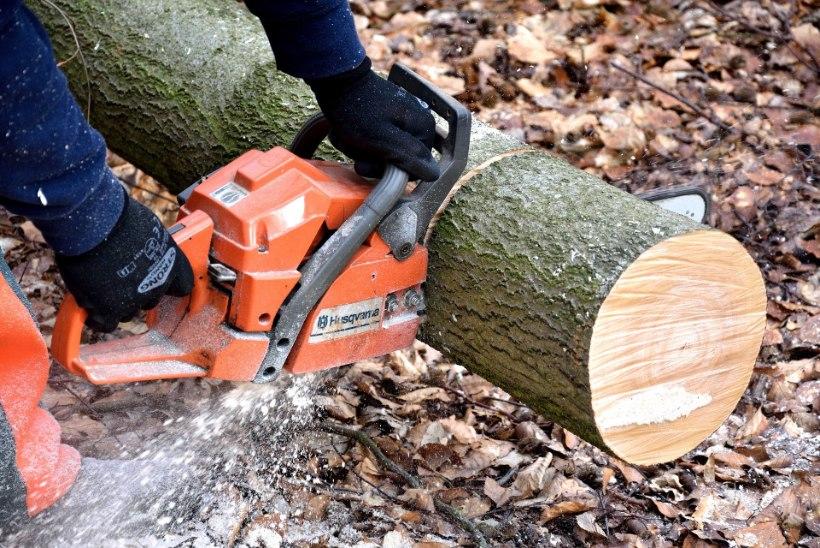 KUI ÄHVARDAB MAAILMALÕPP: 16 tööriista, mida mees vajab