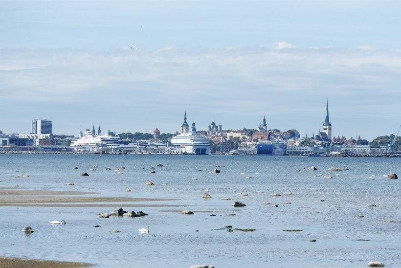 Haldusreformi vingerpuss: Eestis on neli linna suuremad kui Tallinn