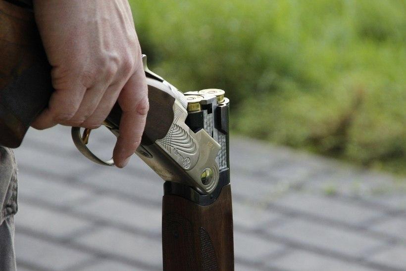 В Латвии мужчина выстрелил в мальчика, который сорвал несколько ягод алычи