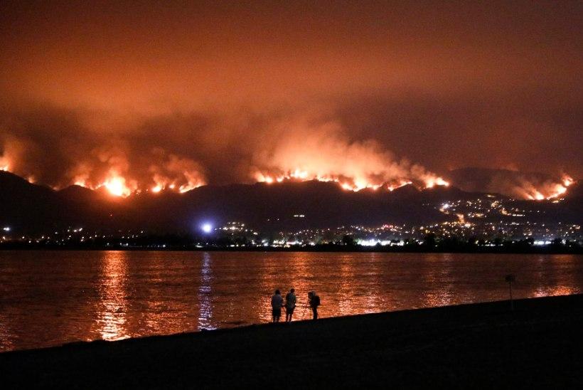 CALIFORNIA HIIGELPÕLENGUD: kuidas lõhkenud autorehvist sai alguse surmav metsatulekahju