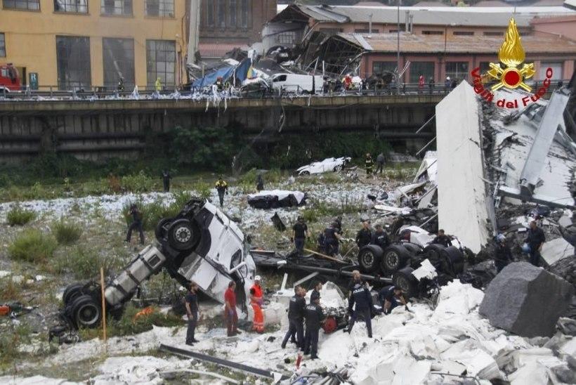Sillavaringust eluga pääsenud Luigi nägi, kuidas autod sügavusse kukkusid