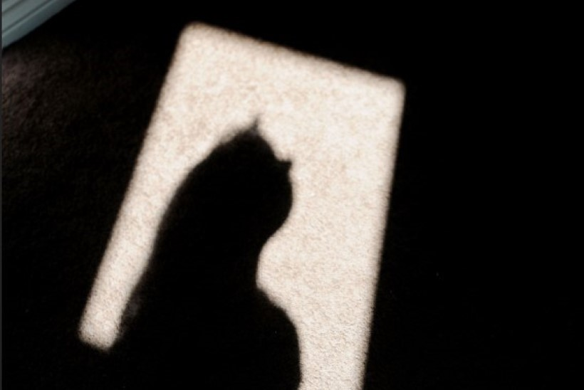 """Жертва сексуального насилия: """"Как я могла пожаловаться на отчима? Так стыдно было..."""""""