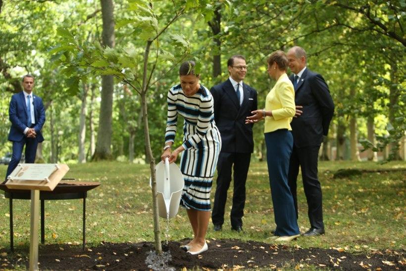 FOTOD   Rootsi kroonprintsess Victoria saabus ühes kaasaga Kadriorgu