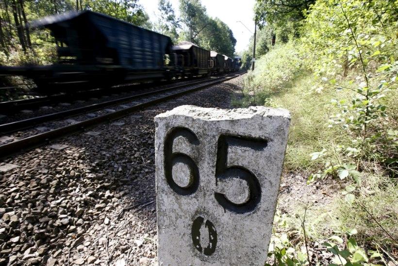 FIASKO: natside kullarong jäi leidmata ja aardeküttide tee läks lahku