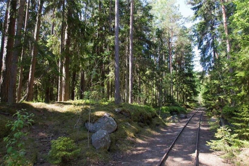 VIDEO | Naissaare elanikud loodavad peagi taas kohalikku raudteed kasutada