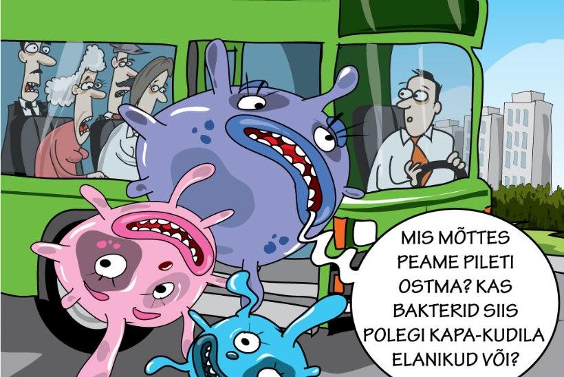 Hannes Luts | Kas piletitasuta bussid jäävad sõitma?