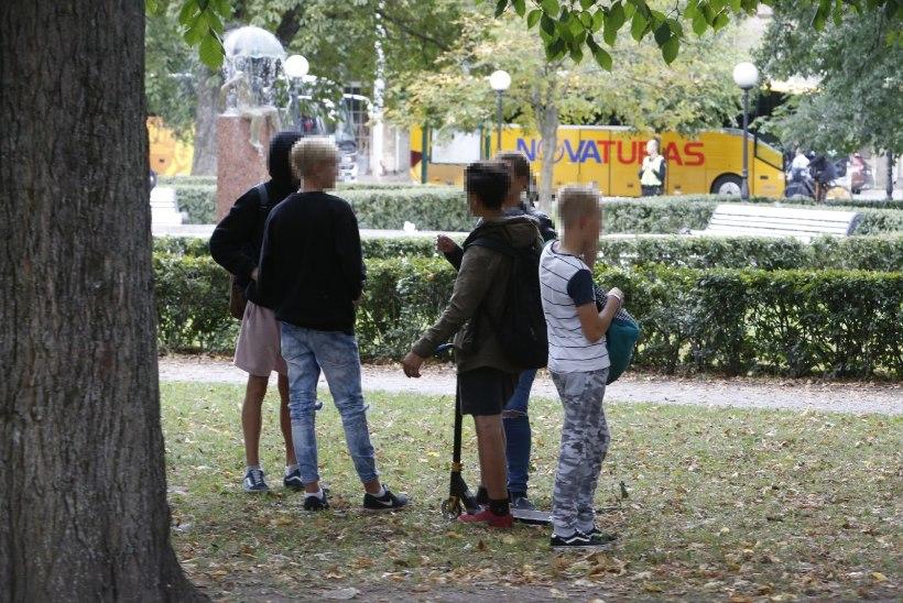 Noored Kanuti aias toimuvast: ilmaasjata ei saa keegi peksa